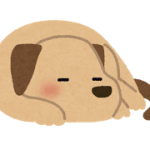 pet_dog_sleep